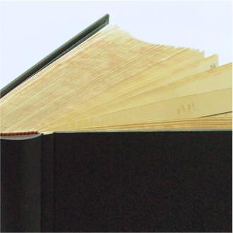 Sprungrückenbuch mit neuer Einbanddecke